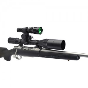 American Hunter Varmint Light