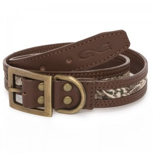 GameGuard Signature Dog Collar