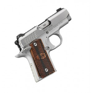 Kimber Micro 9 Stainless Raptor 9mm Luger