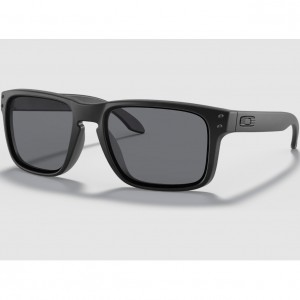Oakley Standard Issue Holbrook Collection