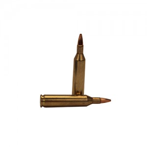 Remington Ammunition .17 Rem. HP 25gr 50rd Box