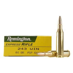 Remington High Performance Rifle 243 Winchester 20rd Ammo