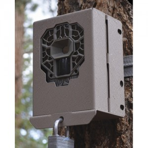 Stealth Cam Security / Bear Box