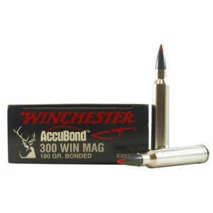 Winchester Expedition Big Game 300 Win Mag 20rd Ammo