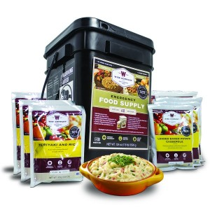 Wise Foods 60 Serving Gourmet Freeze Dry Meat Supply