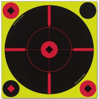 "Birchwood Casey Shoot N C 8"" Bull's-eye ""BMW"" Target"