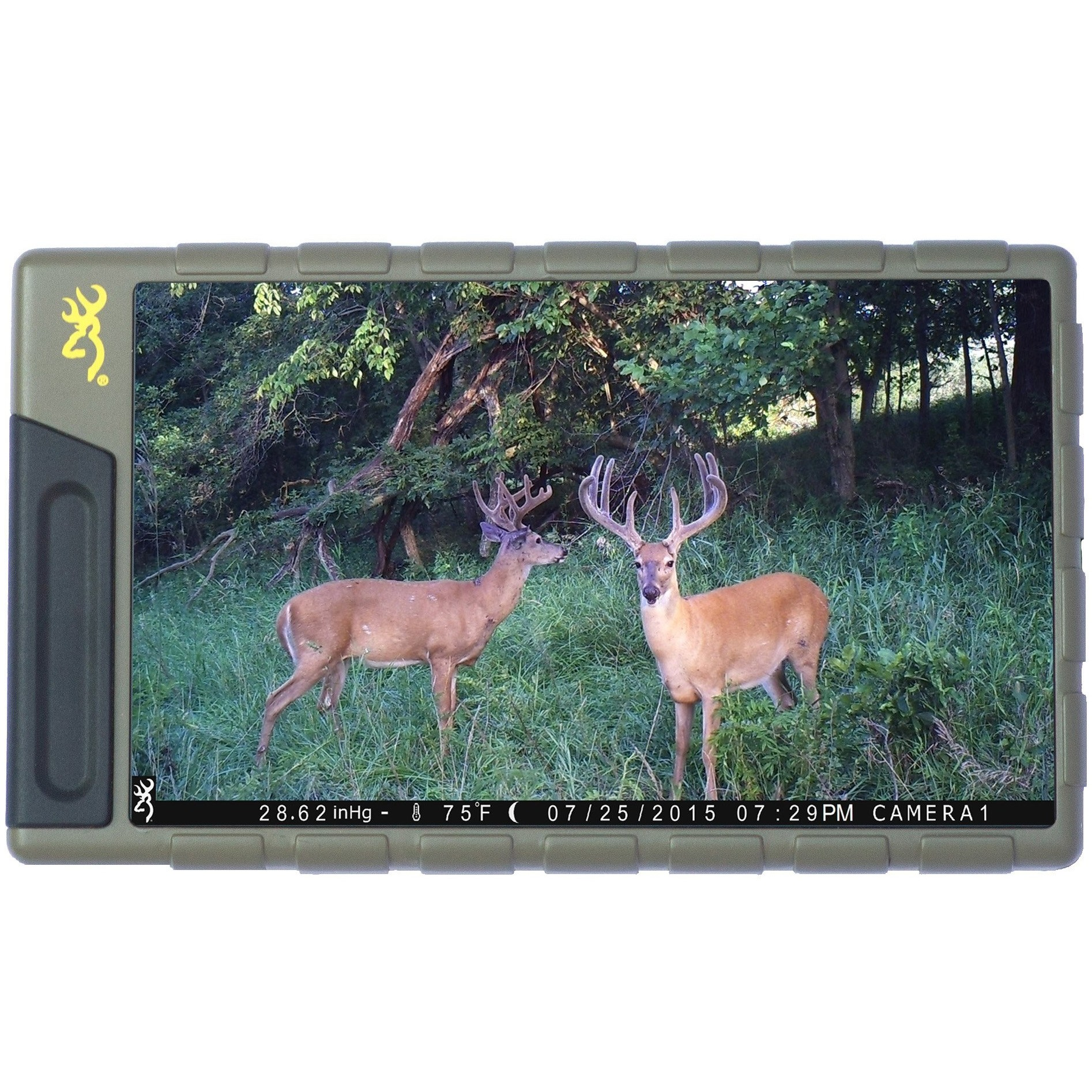 Browning Picture And Video Viewer