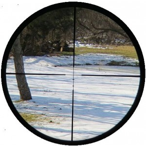 Mueller 2-7x32 APV Muzzleloader Scope